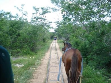 Cenotes Cuzama